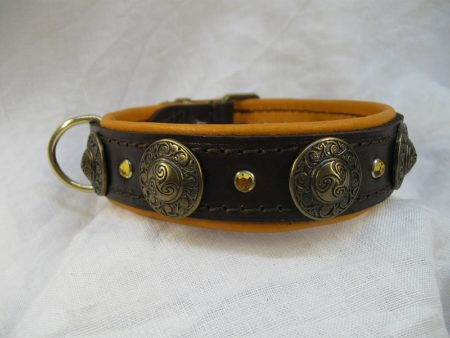 Hundehalsband Pulquita