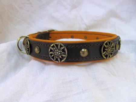 Hundehalsband Tacker